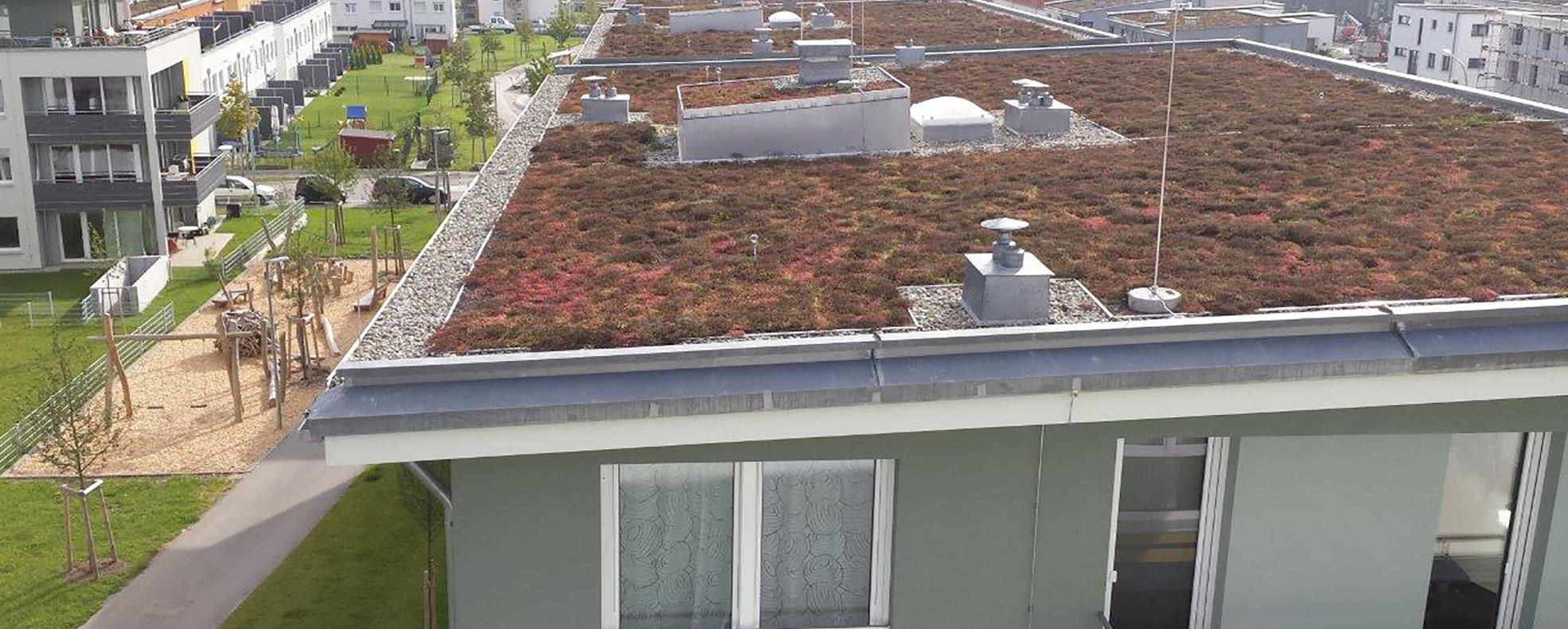 Dachbegrünung und Dachwartungen